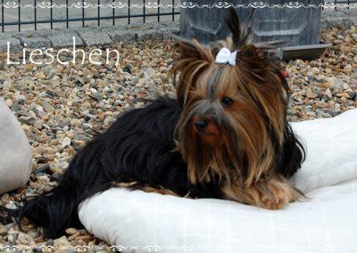 lieschen (14)